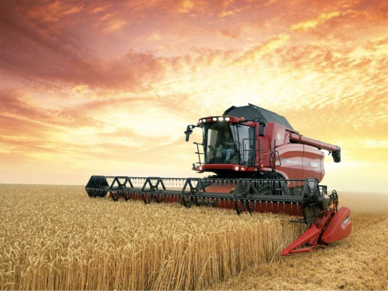 Как иностранцы инвестируют в российское сельское хозяйство
