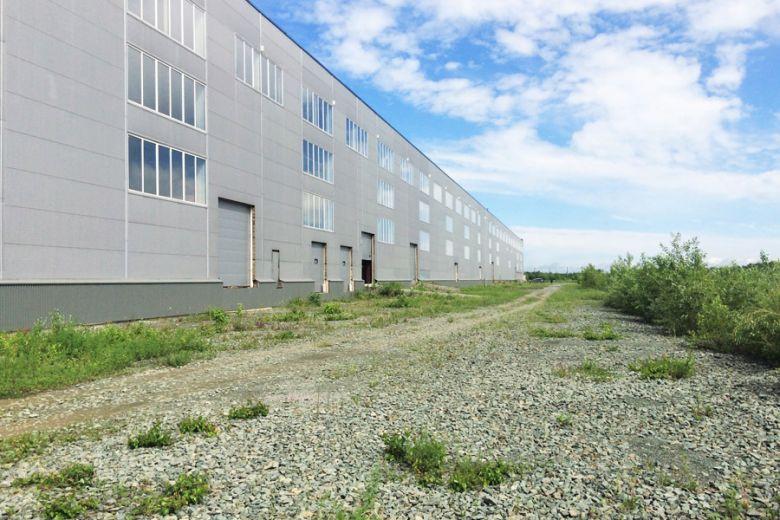 Под Бердском все-таки может появиться индустриальный парк